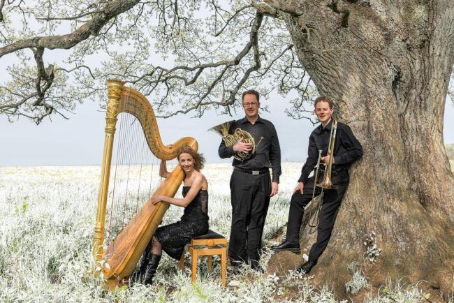 """Das """"Trio Glissando Stuttgart"""" (Foto: Veranstalter)"""