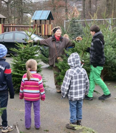 Förderverein der b school Allenbach lädt zum Weihnachtsbaumverkauf ein (Foto: Förderverein)